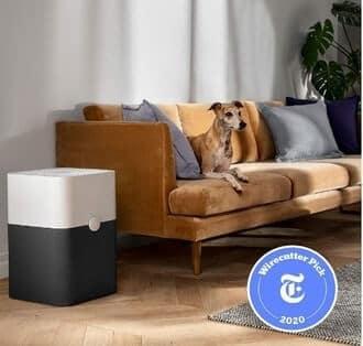 Blueair Blue Pure 211+ – Perfect Size Air Purifier